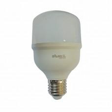 8875 - LAMPADA DE LED BULBO 20W