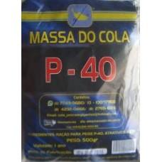 4311 - MASSA PESCA P-40